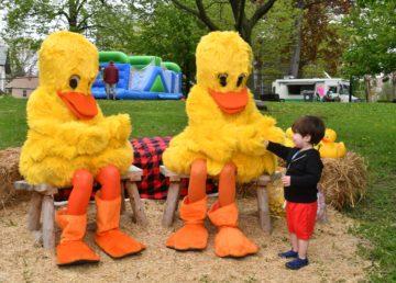 YMCA Duck Derby - Tarrytown