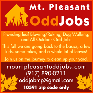 Mt. Pleasant Odd Jobs