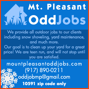 Mt. Pleasant OddJobs