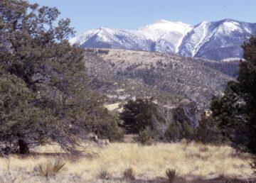 Mountain scene - environmental news