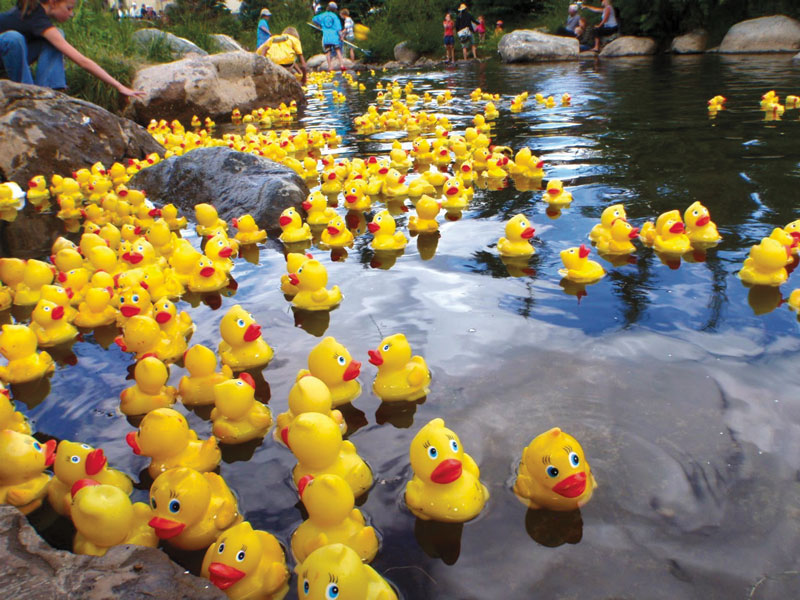 Rotary's Duck Duck Derby and Family YMCA's Healthy Kids Day Set to Wow Patriots Park